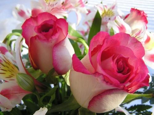 * 12 de Maio, Dia das Mães